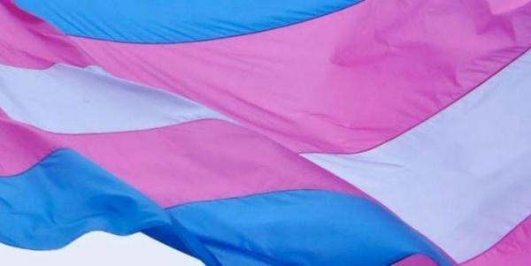 Visibilidade Trans: Secretaria da Mulher reforça que DDM's atendem este público