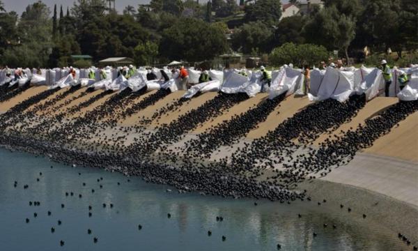 Por que 96 milhões de bolas de plástico foram despejadas em um reservatório de Los Angeles?